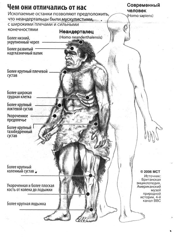 http://old.kpe.ru/img/?neanderthal-i-chelovek&1160112115