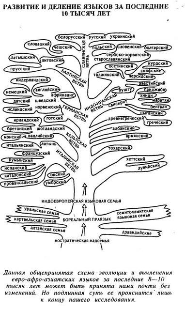 Развитие и деление языков за